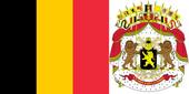 geborduurde belgische vlag, wapen, badges