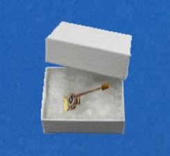 katoen doos voor pins of speldjes