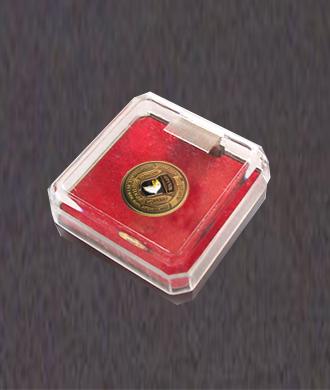 Transparant plastic doos voor pins of speldjes